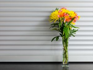 Life-of-Pix-free-stock-photos-Flower-Vase-Xeromatic_R